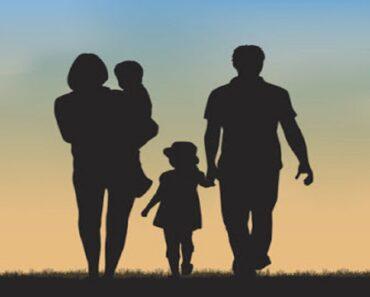 Plano de Aula Família